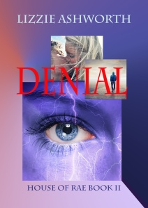 new denial ebook cover copy