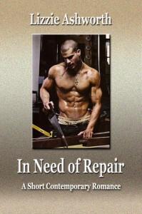 repair-cover